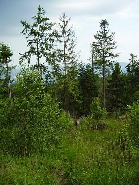 hrebenovka-volovske-vrchy-11