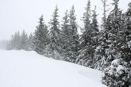 Jizersko (Bachledova dolina)
