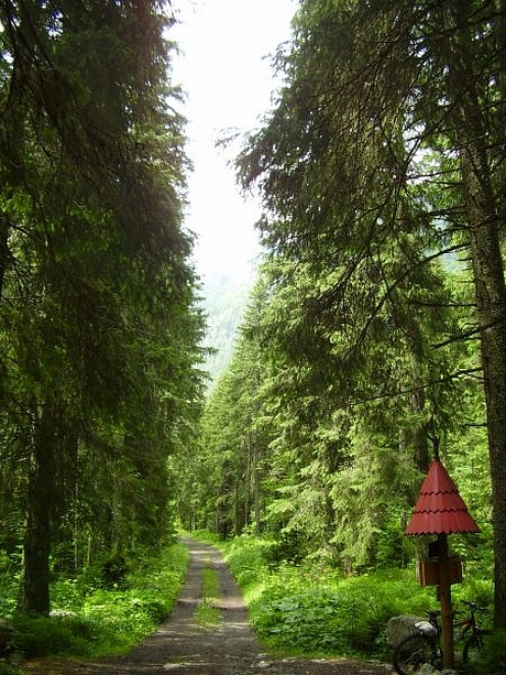 bike-koprova-dolina-3