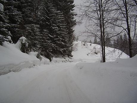 holiday2006-martinske_hole