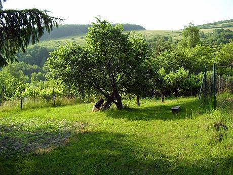kavecany-zahrada-2