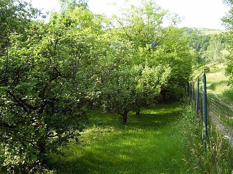 kavecany-zahrada-3