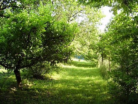 kavecany-zahrada-4