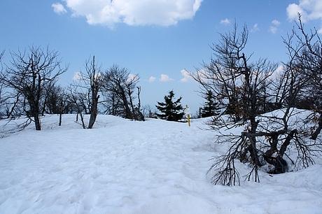 na vrchole Vtáčnika