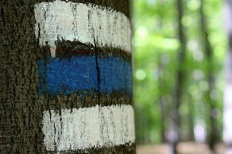 modrou pod Biely Kameň