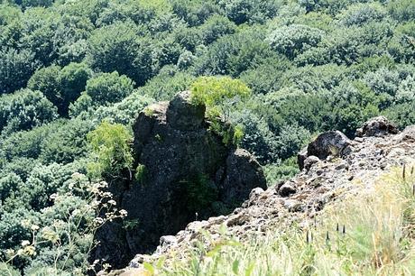 Rankovské skaly, homola