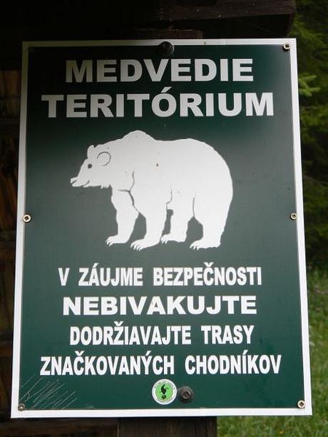 Kráľovstvo medveďov