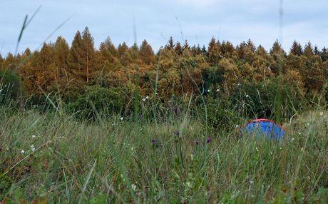 camp 1 - neďaleko Silickej Brezovej
