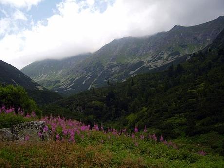 Račkova dolina, pohľad z Gáborovej doliny