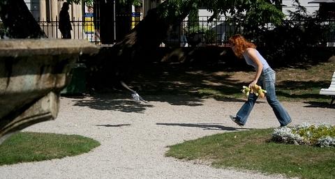 Mamča Rea mi nadháňa holuba :)