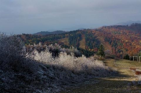 Lysá, Čergovské vrchy