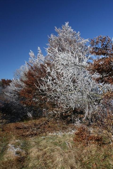 nad Jeseňou preberá vládu Zima, Čergovské vrchy