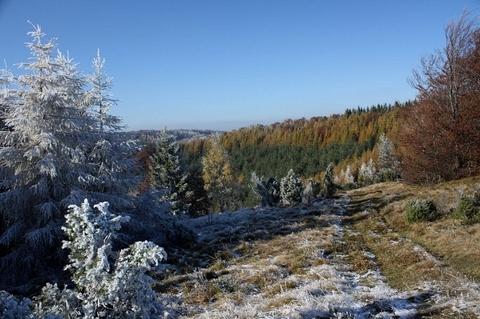 farby neskorej jesene, nad sedlom Lysina, Čergovské vrchy