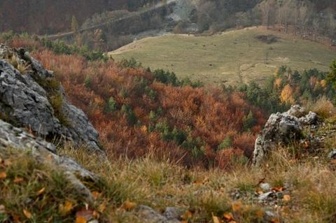 farby Jesene, Holica, Čierna Hora