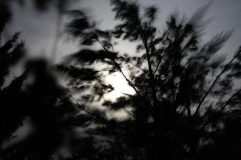 ... aspoň mesiac v tom vetre a daždi pekne svietil ...