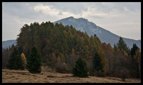 Folkmarská skala, Volovské vrchy