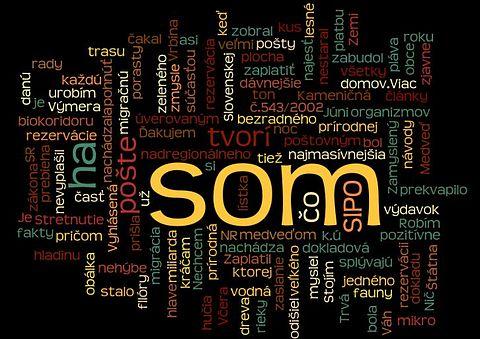 11.11.10 - Som