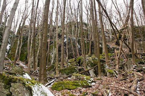 Onderkove skaly, Slánske vrchy.