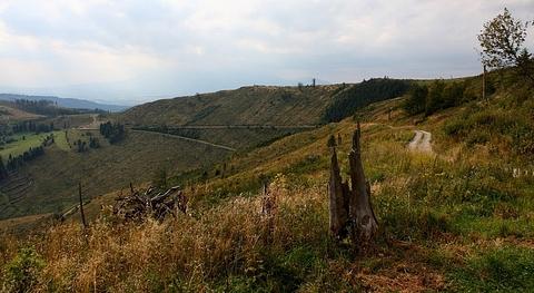 ... Javorina, Levočské vrchy ...
