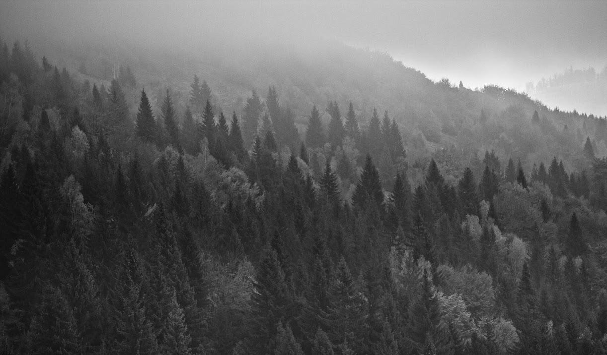 Volovske vrchy
