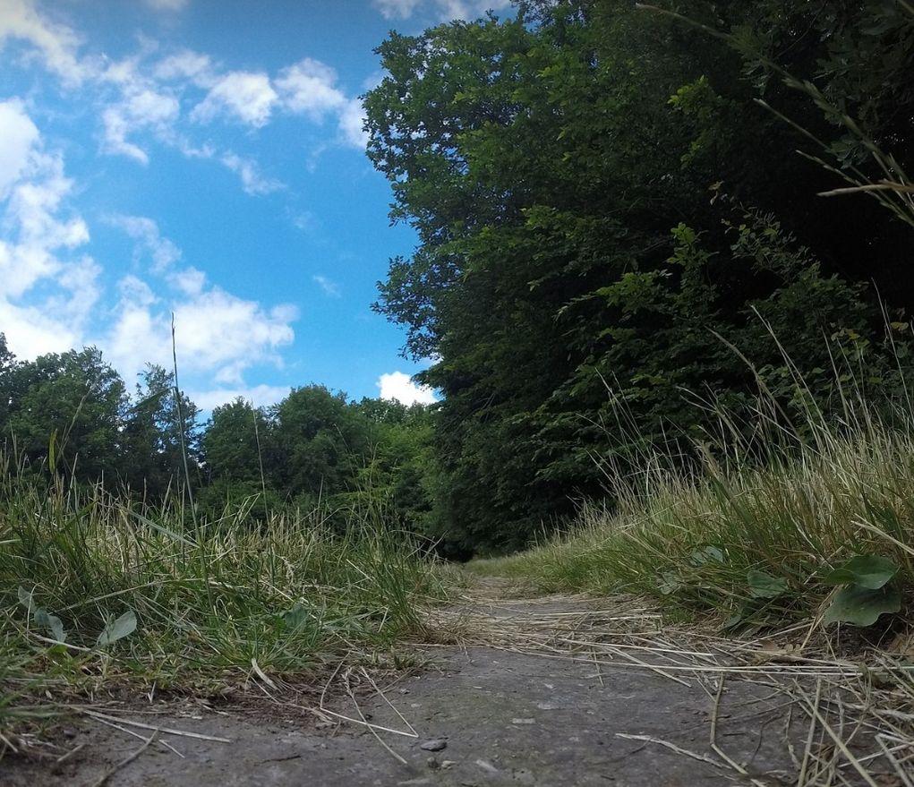 Jahodna, trail run