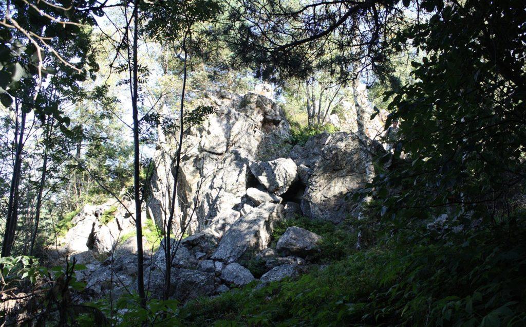 Rozsypaná slala, Čierna hora